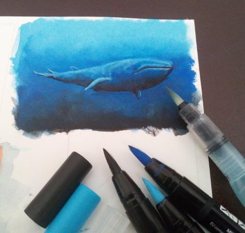unterwasser uni brush marker wal - realistische tierbilder zeichnen - sockenzombie